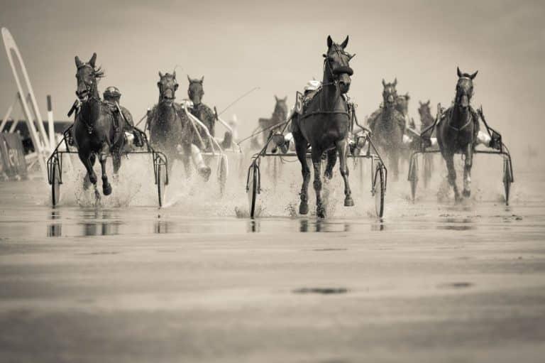 världens snabbaste travhäst