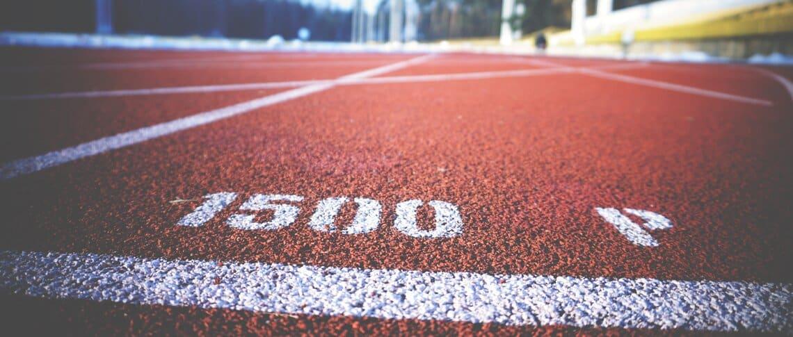 största sporterna i sverige