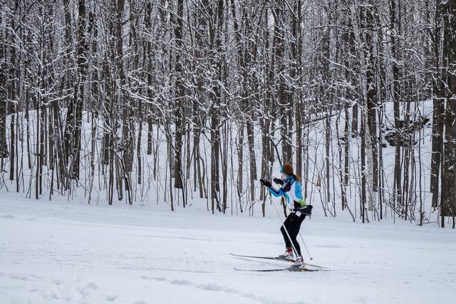längdskidor-sportlobby